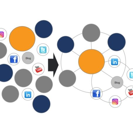 cohesive digital ecosystem